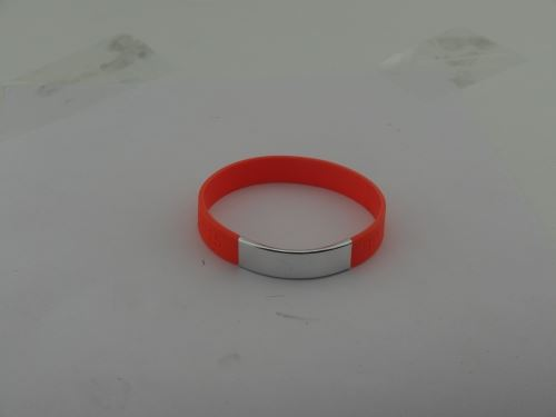 silicone-bracelets-with-charms_4392.jpg
